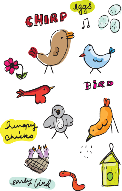 Hand Drawn Birds